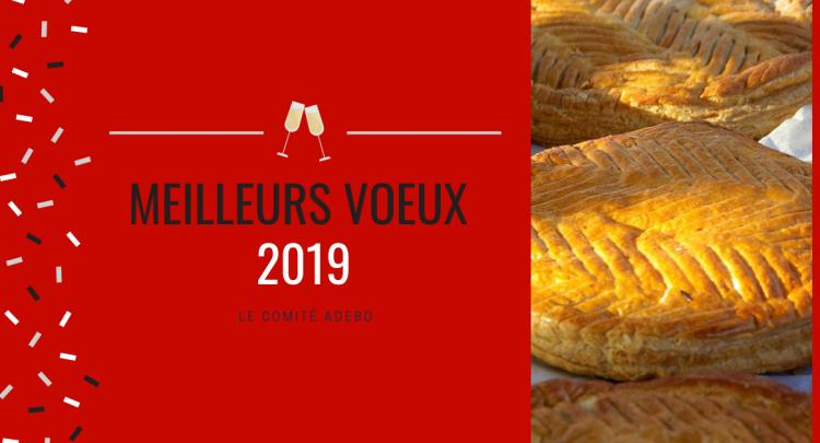 vœux 2019, galette des rois