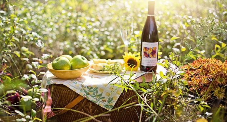 pique-nique champêtre avec vin et fruits
